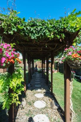Path With Canopy