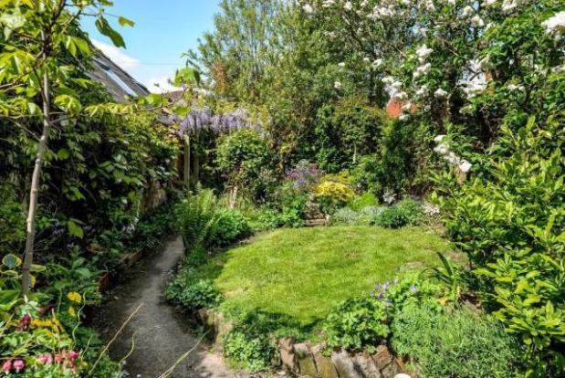 Mature, well stocked, private Garden