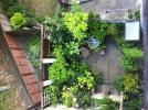 Yard Image Two