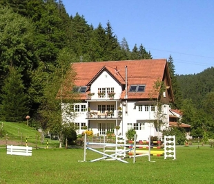 7 bed Country House in Baden-W�rttemberg...