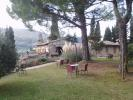 36 bedroom Farm House for sale in Tuscany, Siena...