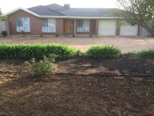 1005 Old Sturt Highway property