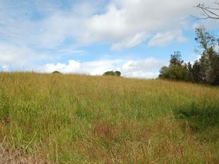property for sale in Lot A Pacific Highway, URUNGA 2455