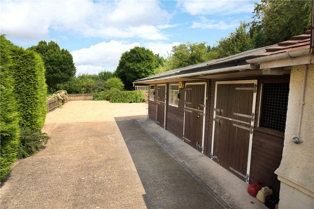 Stables and Driveway