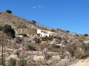 Cortijo for sale in Andalusia, Almer�a...