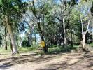 property for sale in 8 Orion Street, MACLEAY ISLAND 4184