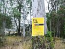 property for sale in 26 Cliff Terrace, MACLEAY ISLAND 4184
