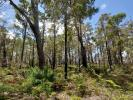 property for sale in Lot 43 Karri Lane, QUINNINUP 6258