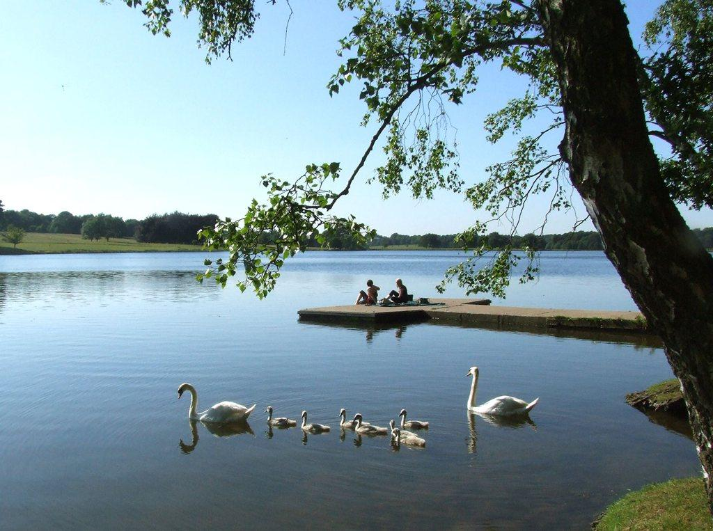 Tatton Park, Cheshire