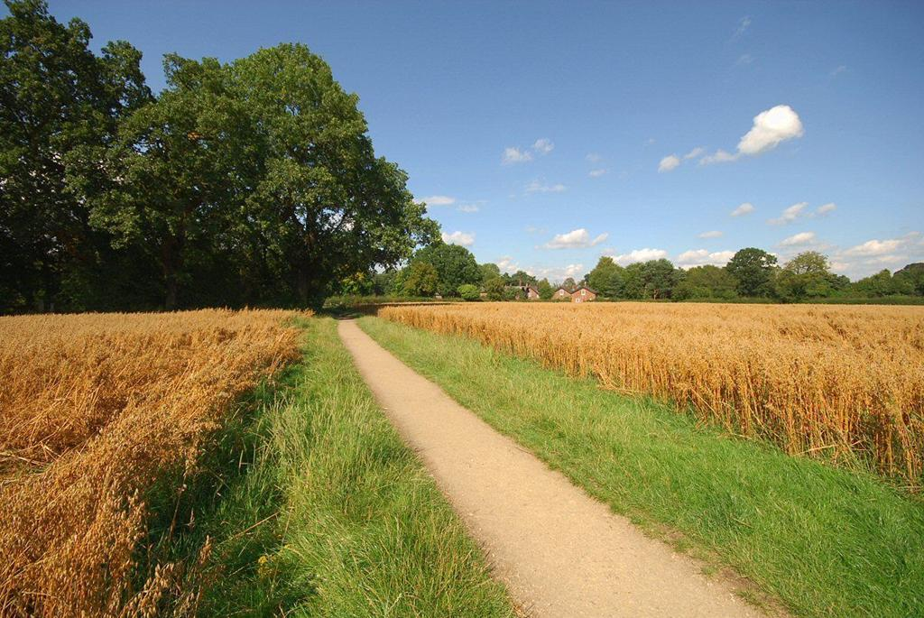 Northwich Countryside