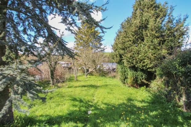 PH garden 2