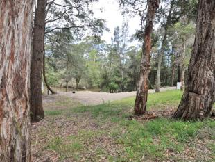 property for sale in 17 Muloora Road, SPRINGFIELD 2250