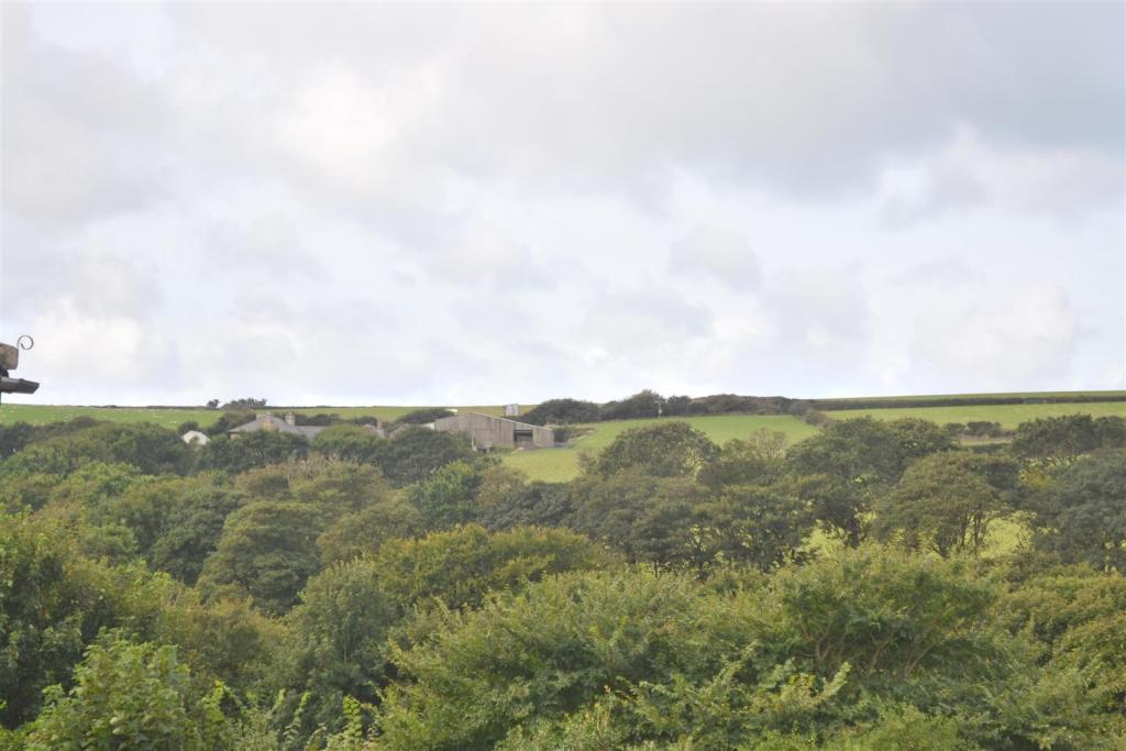 View to the farm.JPG