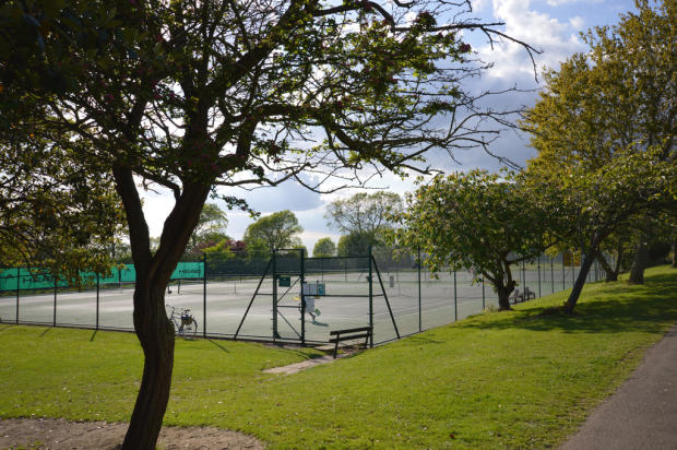 Dyke Road Park