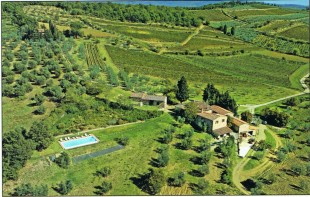 property for sale in Tuscany, Florence, Greve in Chianti