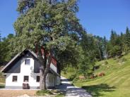 Cottage for sale in Radovljica...