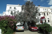 Flat in Hervey Road Blackheath...
