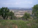 Algarve Land