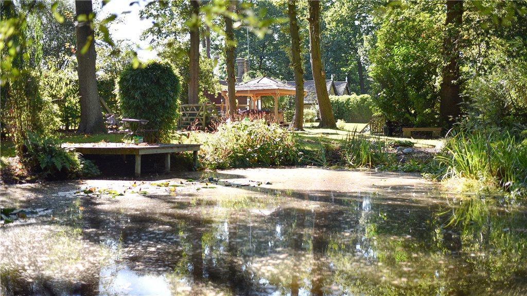 Pond Shot 3