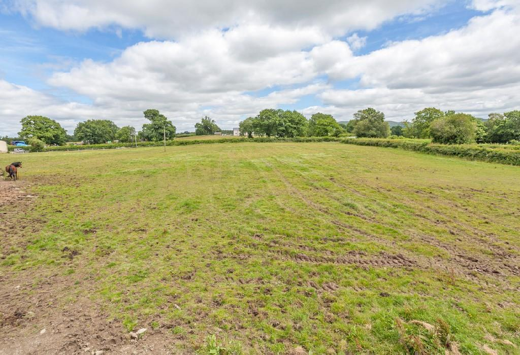 Front Field 2.jpg