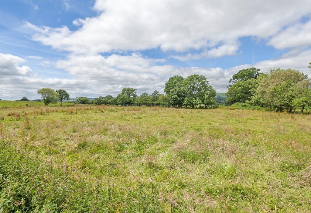 Rear Field 1.jpg