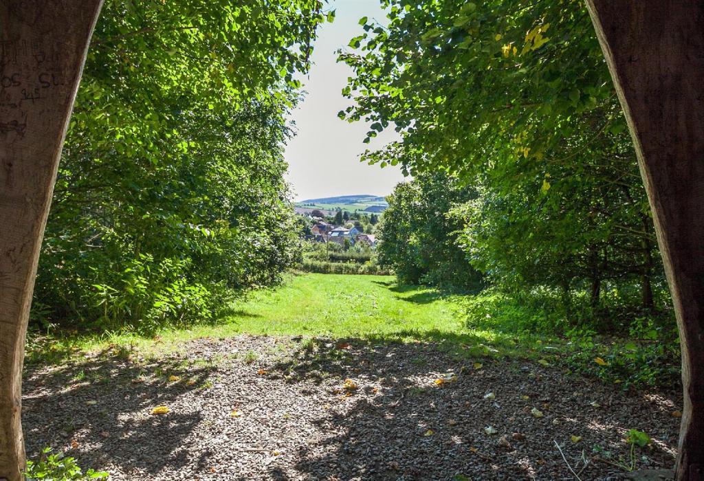 Woodland Seat View.j