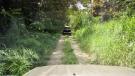 Trail (3 min drive)