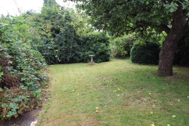 Half of the rear garden