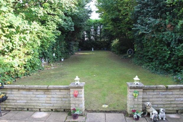 South-east facing garden