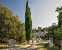 Montalcino property