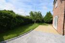 Main garden area ...