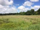 Land for sale in Selworth Lane, SO32