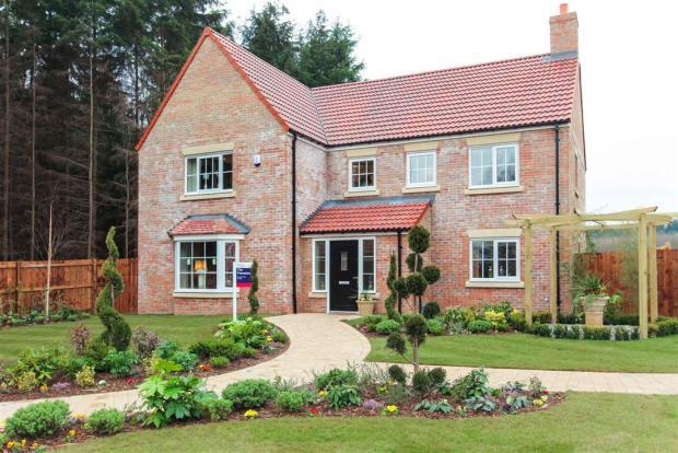 Image of Frampton showhome at Wynyard Manor