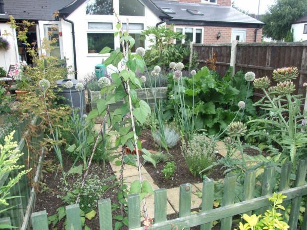 Rear Garden3