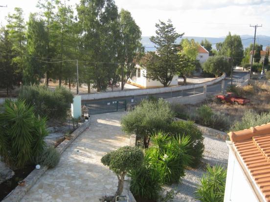 Stone-paved Driveway