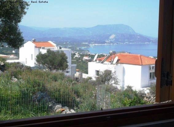 View -bedroom window