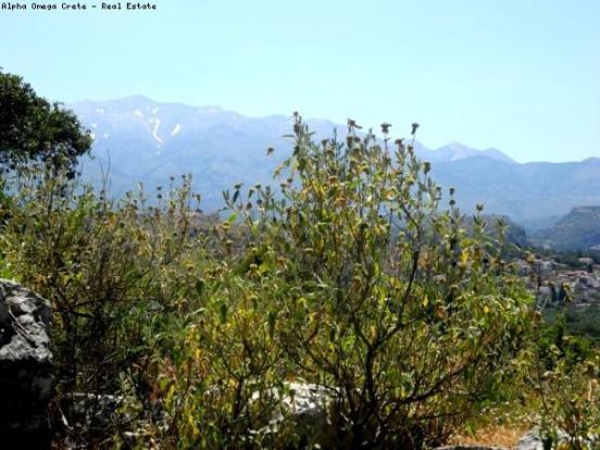 White Mountain views