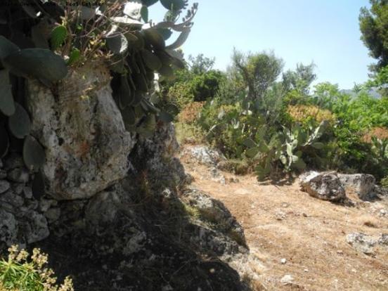Natural rocky landsc