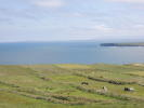 Mayo Farm Land for sale