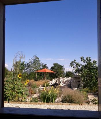 From kitchen window