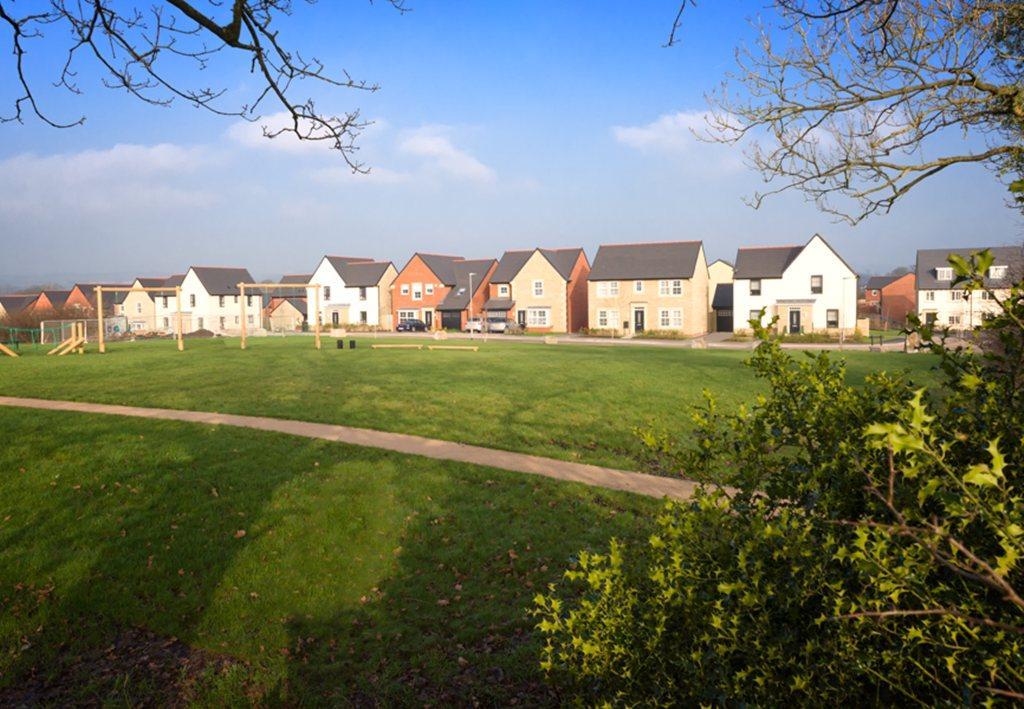 Ribble Meadows