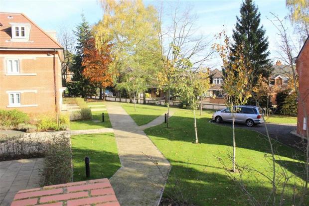 Communal lawns