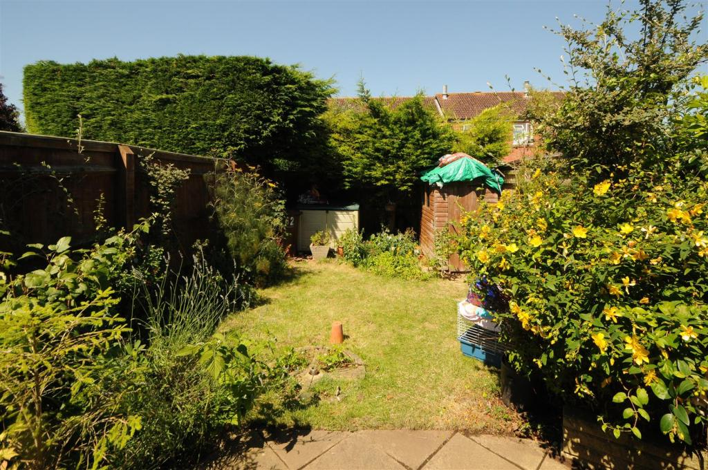garden.jpg