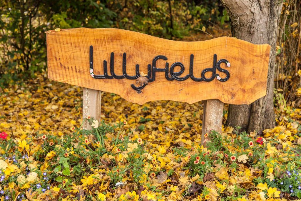 LillyFields (55).JPG