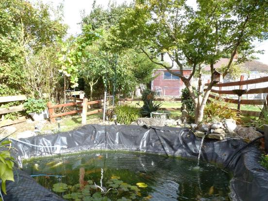 Garden 3.png