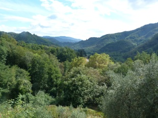 4 bed Detached home in Tuscany, Lucca...