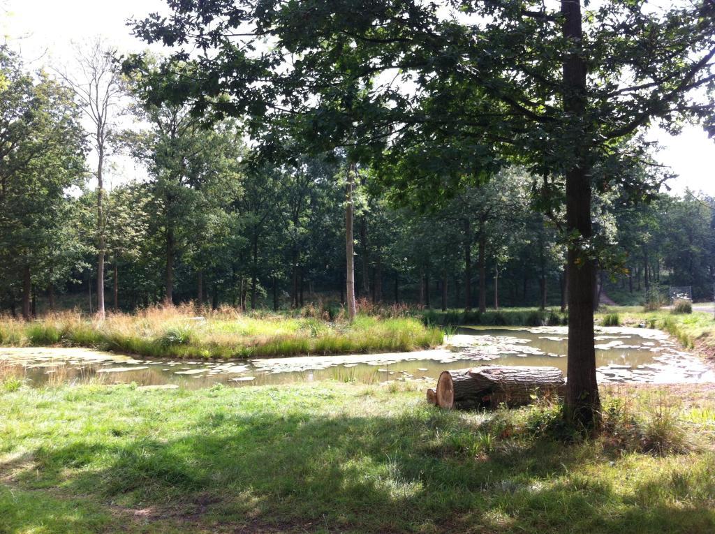 Horseshoe shaped pond. Ideal for fishing!
