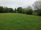 property for sale in Lisacul, Castlerea, Roscommon