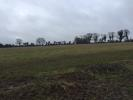 property for sale in Stacumney, Celbridge, Co. Kildare - approx. 11 acres.