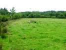 property for sale in Carha, Carrowneaden, Coolaney, Co. Sligo